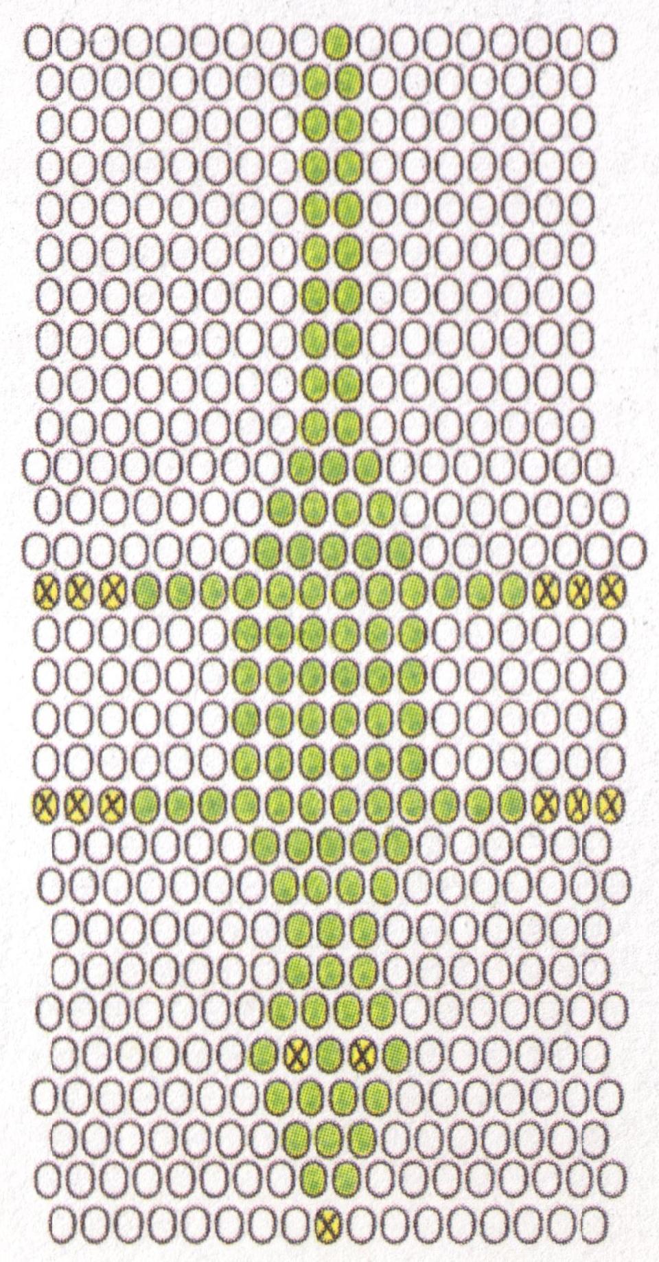 схема бисераплетения крокодила