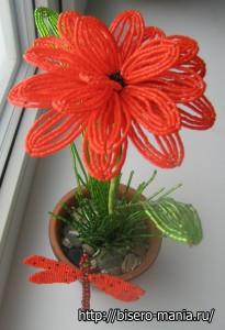 аленький цветочек